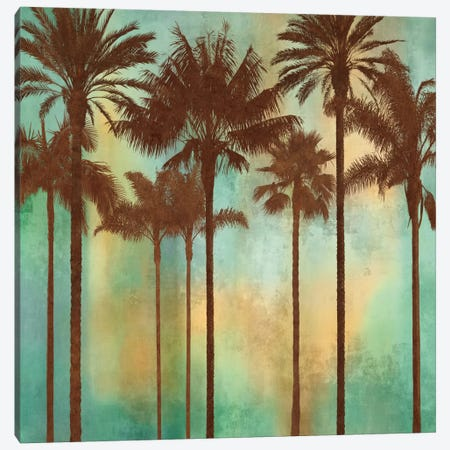 Aqua Palms II Canvas Print #JOH5} by John Seba Canvas Print