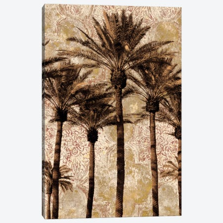 Palm Collage II Canvas Print #JOH62} by John Seba Canvas Artwork