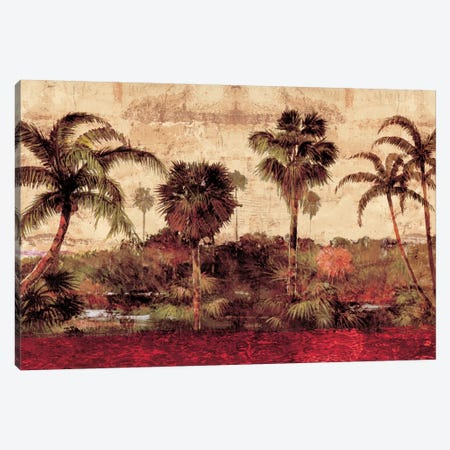 Palm Garden Canvas Print #JOH63} by John Seba Canvas Wall Art