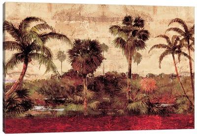 Palm Garden Canvas Print #JOH63