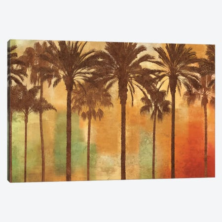 Palm Paradise Canvas Print #JOH68} by John Seba Canvas Artwork