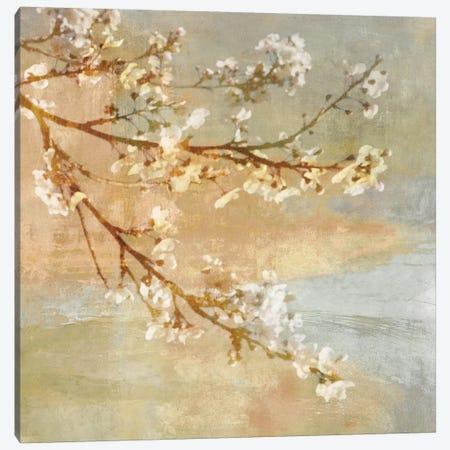 Blossoms On The Pond I Canvas Print #JOH6} by John Seba Canvas Print