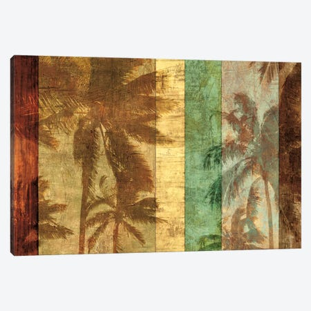 Palm Shadows II Canvas Print #JOH70} by John Seba Canvas Art Print