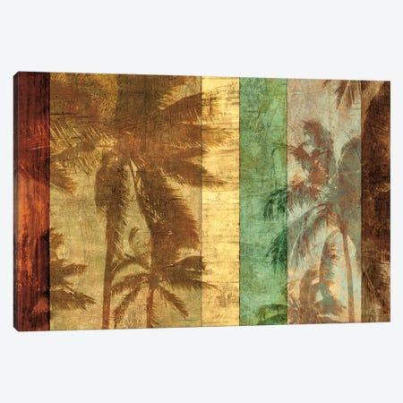 Palm Shadows II Canvas Print #JOH70} by John Seba Canvas Art Print
