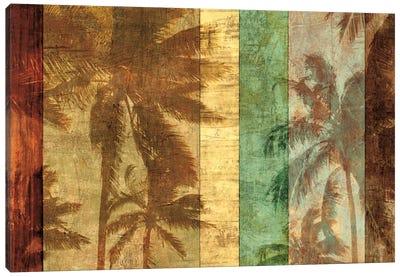 Palm Shadows II Canvas Art Print