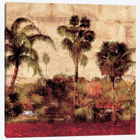 Palmas II Canvas Print #JOH74} by John Seba Canvas Art