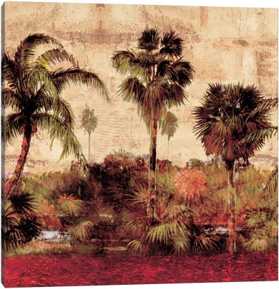 Palmas II Canvas Art Print