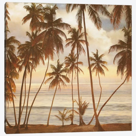 Palms On The Water I Canvas Print #JOH75} by John Seba Canvas Art