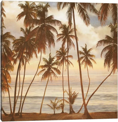 Palms On The Water I Canvas Print #JOH75