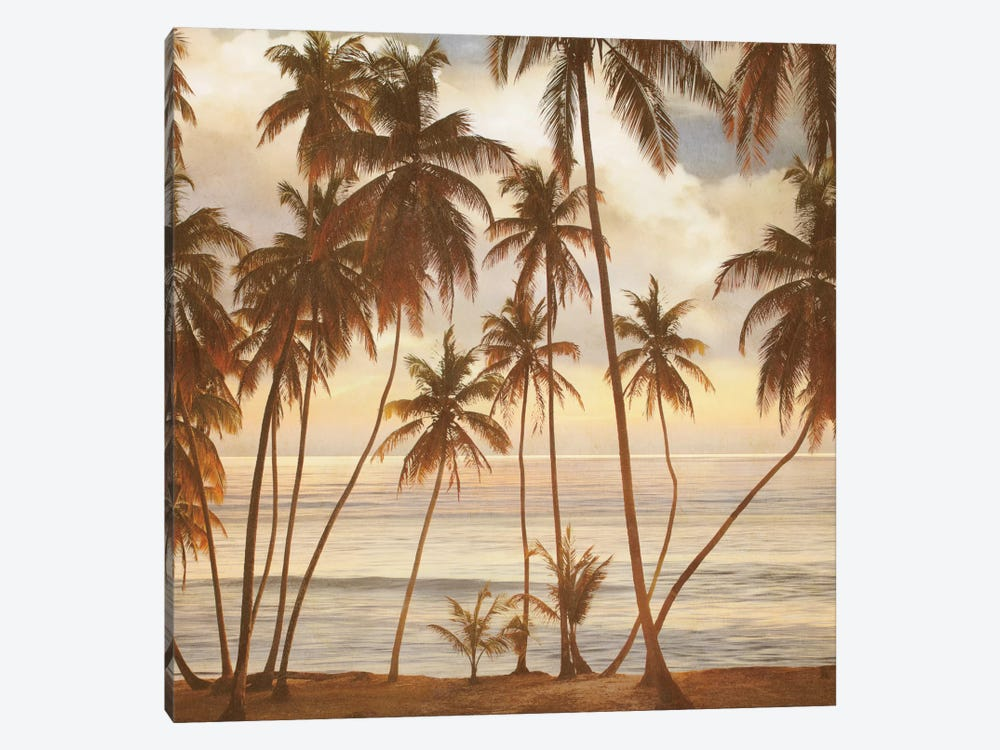 Palms On The Water I by John Seba 1-piece Canvas Print