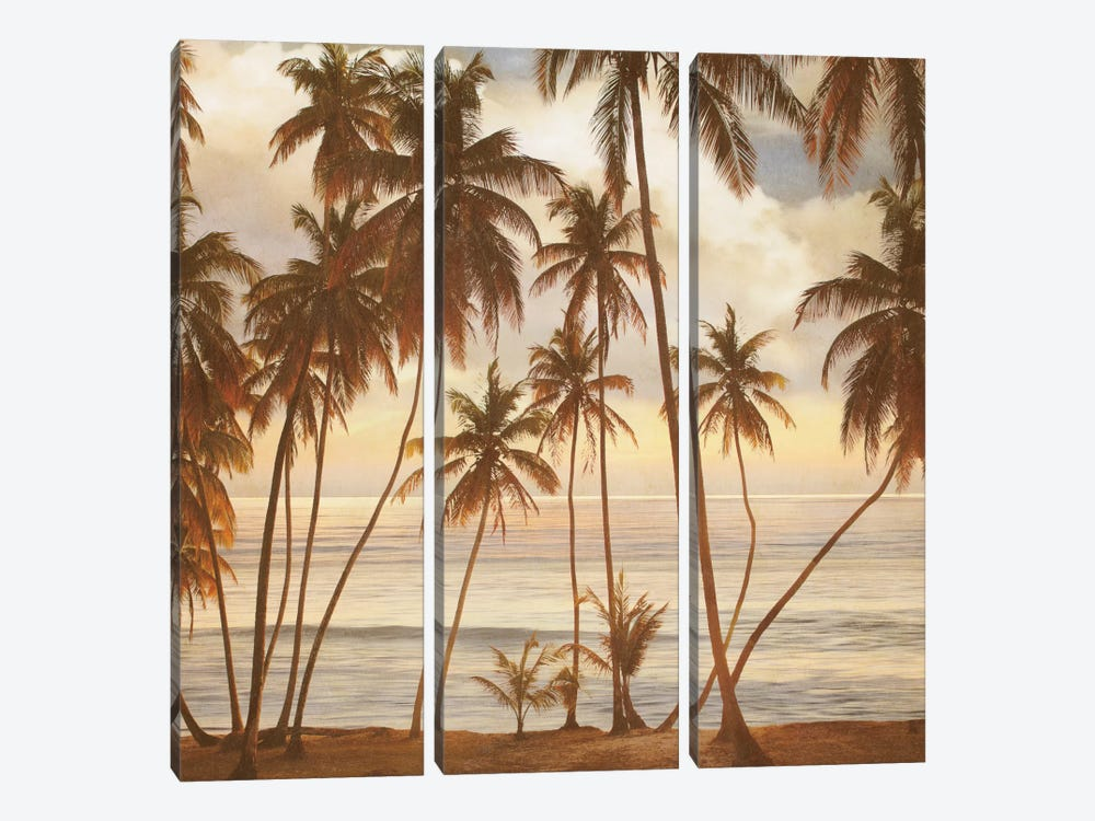 Palms On The Water I by John Seba 3-piece Canvas Print
