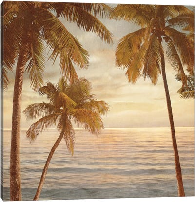 Palms On The Water II Canvas Print #JOH76