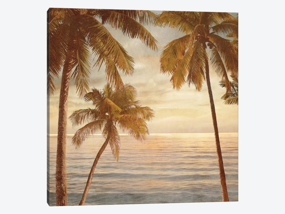 Palms On The Water II by John Seba 1-piece Canvas Art