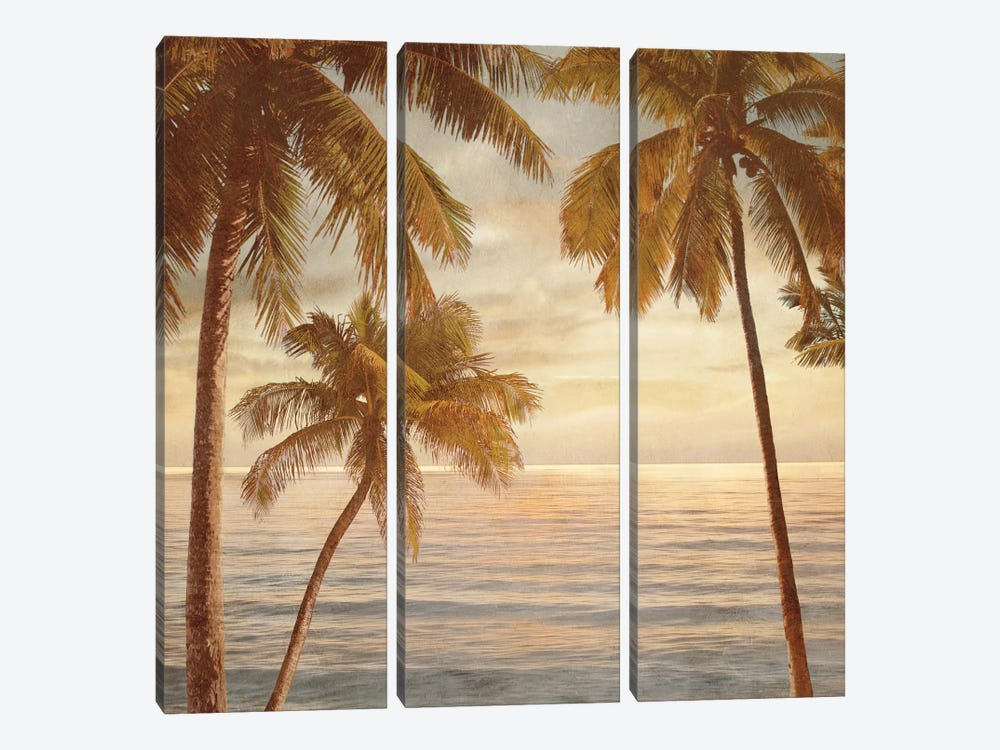 Palms On The Water II by John Seba 3-piece Canvas Art