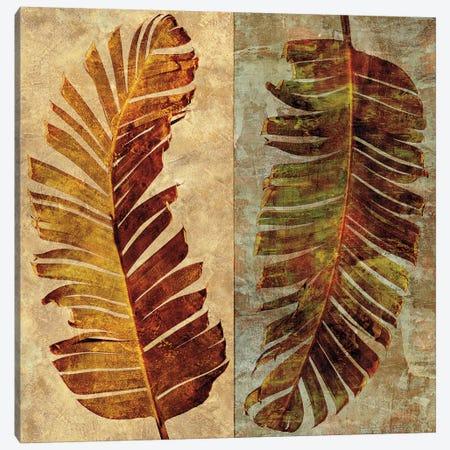 Palms Pairs I Canvas Print #JOH77} by John Seba Canvas Artwork