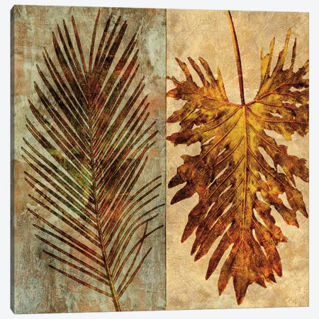 Palms Pairs II Canvas Print #JOH78} by John Seba Canvas Print