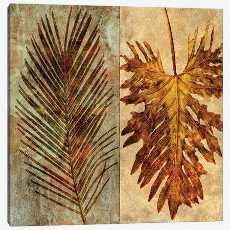 Palms Pairs II Canvas Print #JOH78} by John Seba Canvas Print
