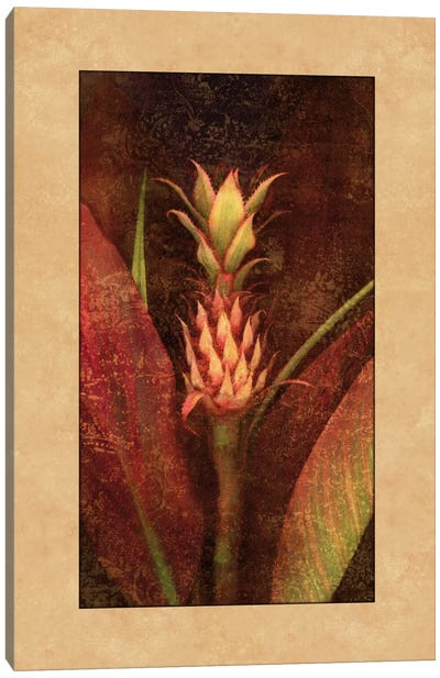 Pineapple Canvas Print #JOH79