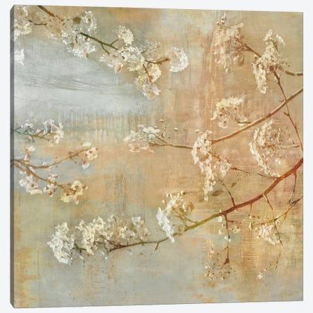 Blossoms On The Pond II Canvas Print #JOH7} by John Seba Canvas Art Print