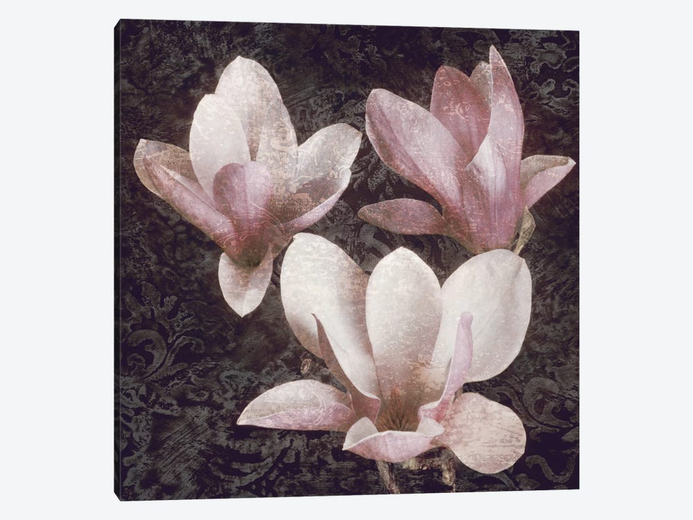 Pink Magnolias II by John Seba 1-piece Canvas Wall Art