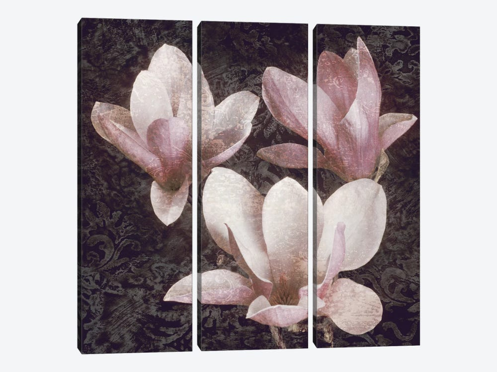 Pink Magnolias II by John Seba 3-piece Canvas Artwork