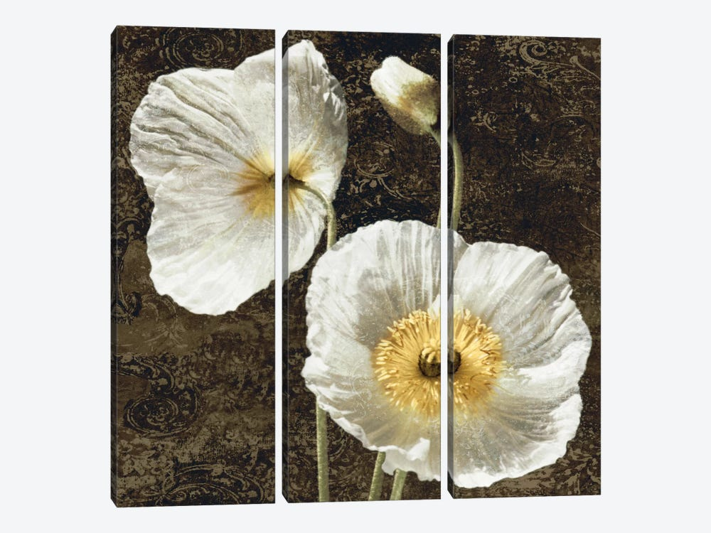 Poppies I by John Seba 3-piece Art Print