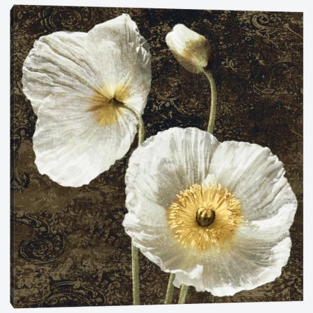 Poppies I Canvas Print #JOH82} by John Seba Canvas Artwork