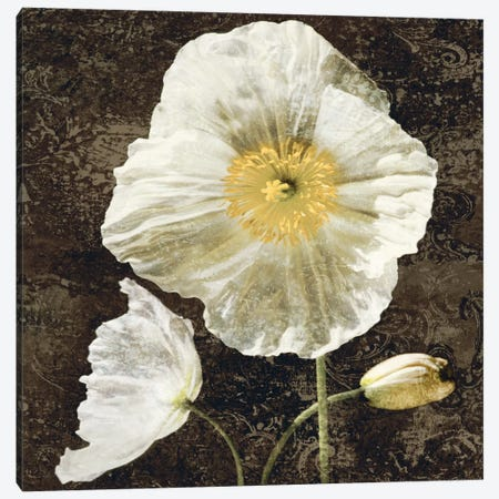 Poppies II Canvas Print #JOH83} by John Seba Canvas Wall Art