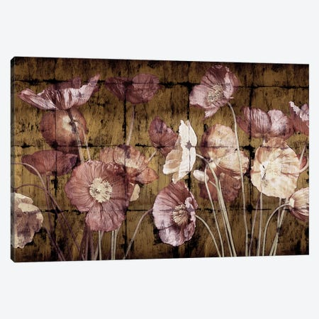 Poppies On Gold Canvas Print #JOH84} by John Seba Art Print