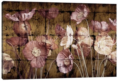 Poppies On Gold Canvas Print #JOH84