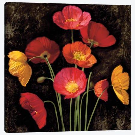 Poppy Bouquet I Canvas Print #JOH85} by John Seba Canvas Print