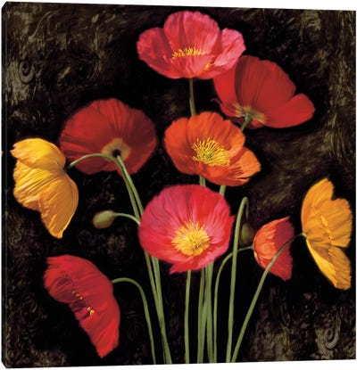 Poppy Bouquet I Canvas Print #JOH85