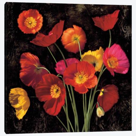 Poppy Bouquet II Canvas Print #JOH86} by John Seba Art Print