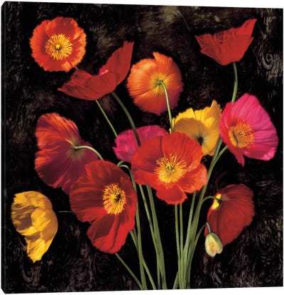 Poppy Bouquet II Canvas Art Print