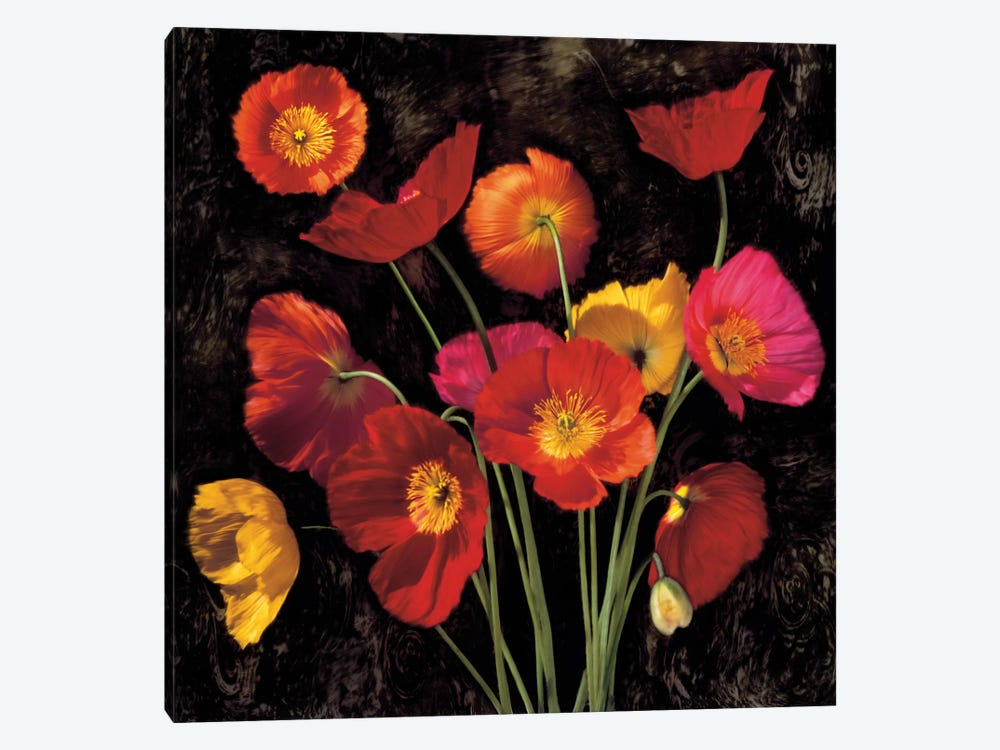 Poppy Bouquet II by John Seba 1-piece Art Print