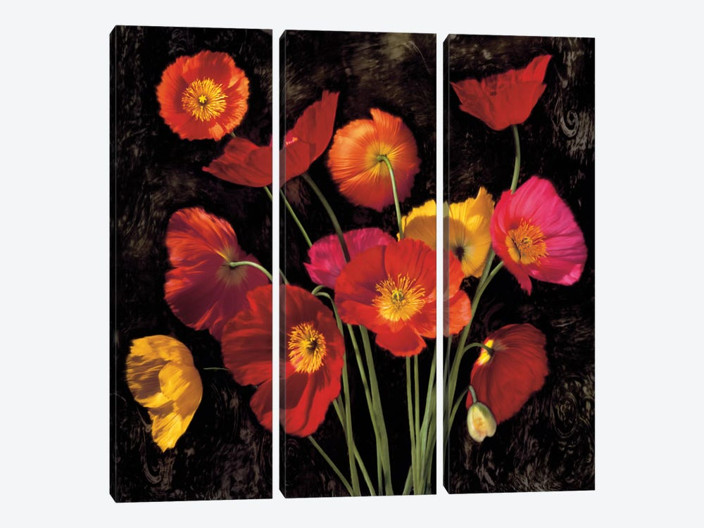 Poppy Bouquet II by John Seba 3-piece Canvas Print