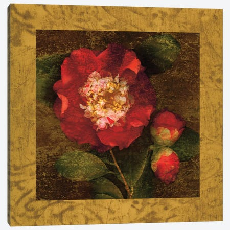 Red Camellias I Canvas Print #JOH89} by John Seba Canvas Artwork