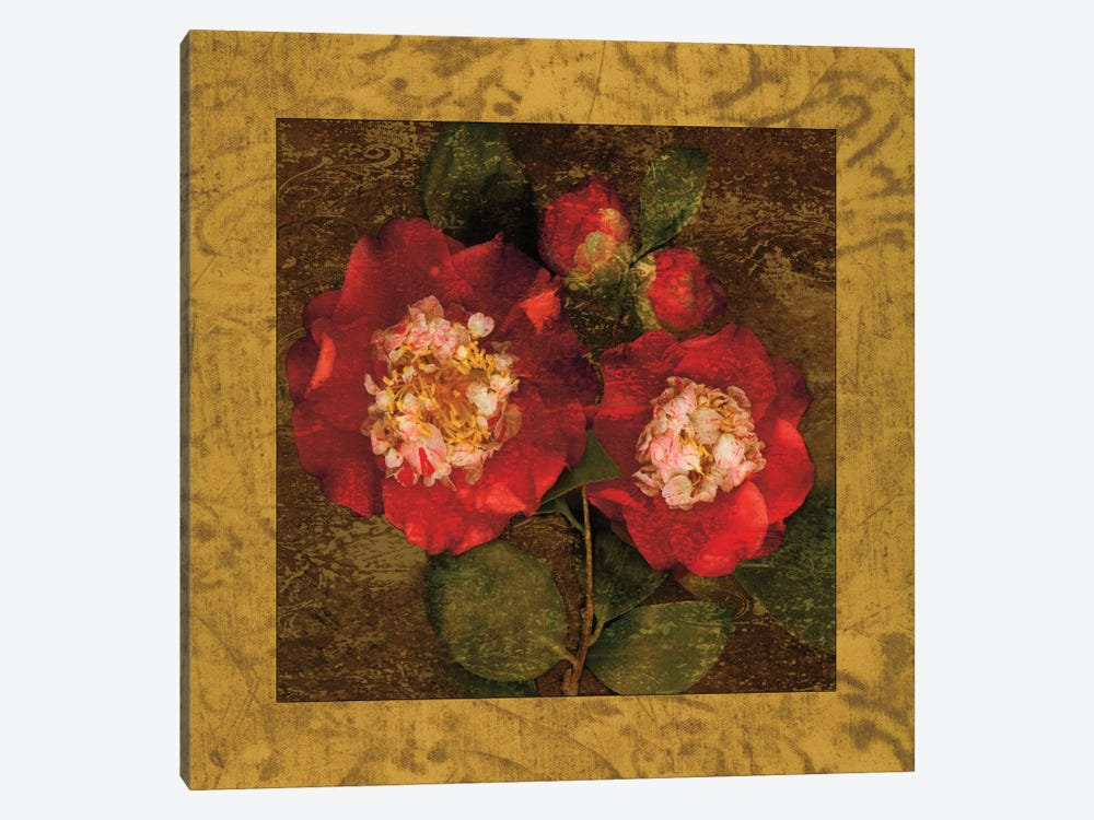 Red Camellias II by John Seba 1-piece Canvas Artwork