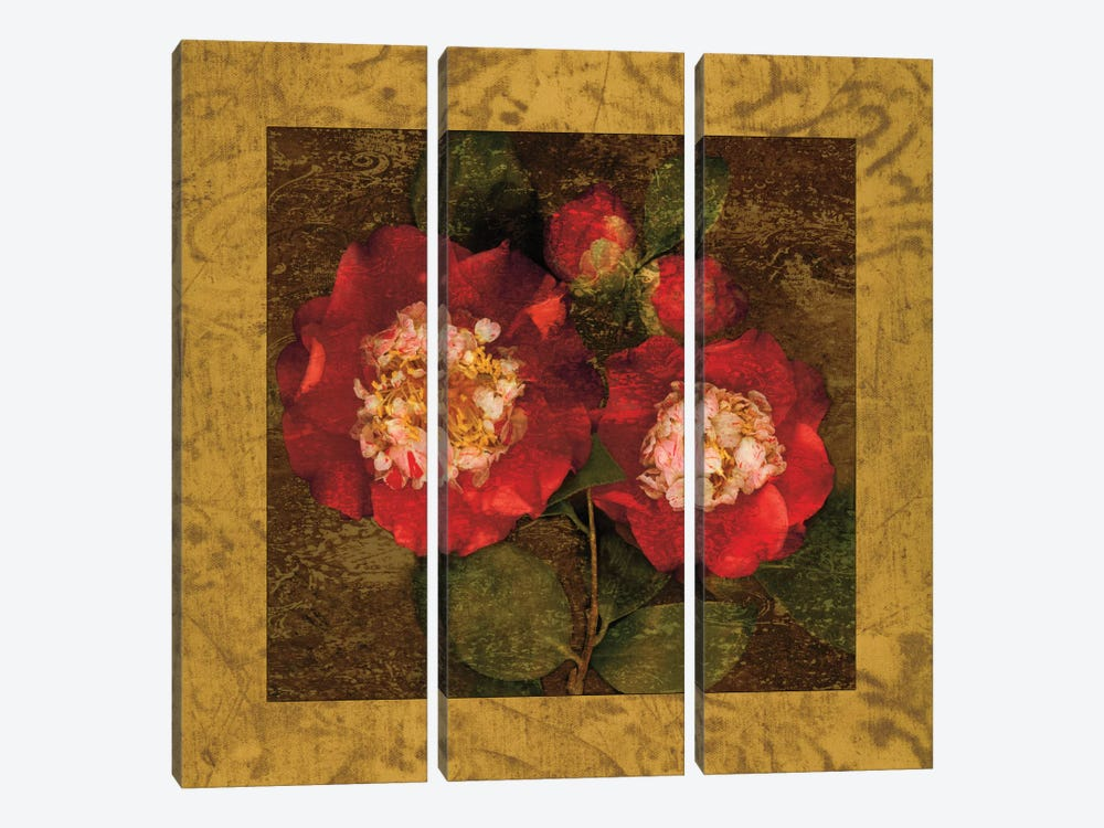Red Camellias II by John Seba 3-piece Canvas Artwork