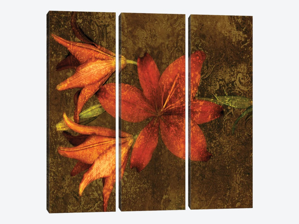 Red Lilies by John Seba 3-piece Canvas Art Print