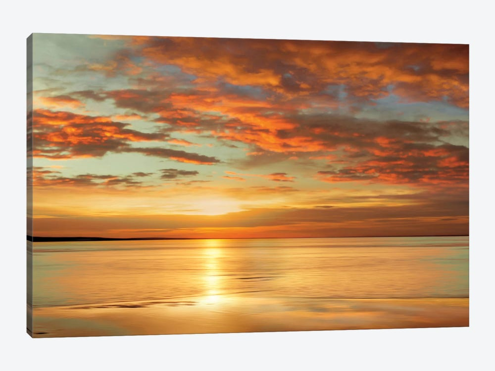 Sunlit by John Seba 1-piece Canvas Art Print