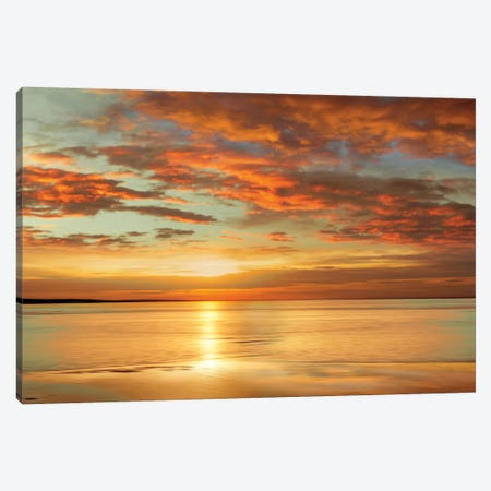 Sunlit Canvas Print #JOH99} by John Seba Art Print