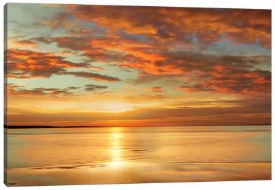 Sunlit Canvas Art Print