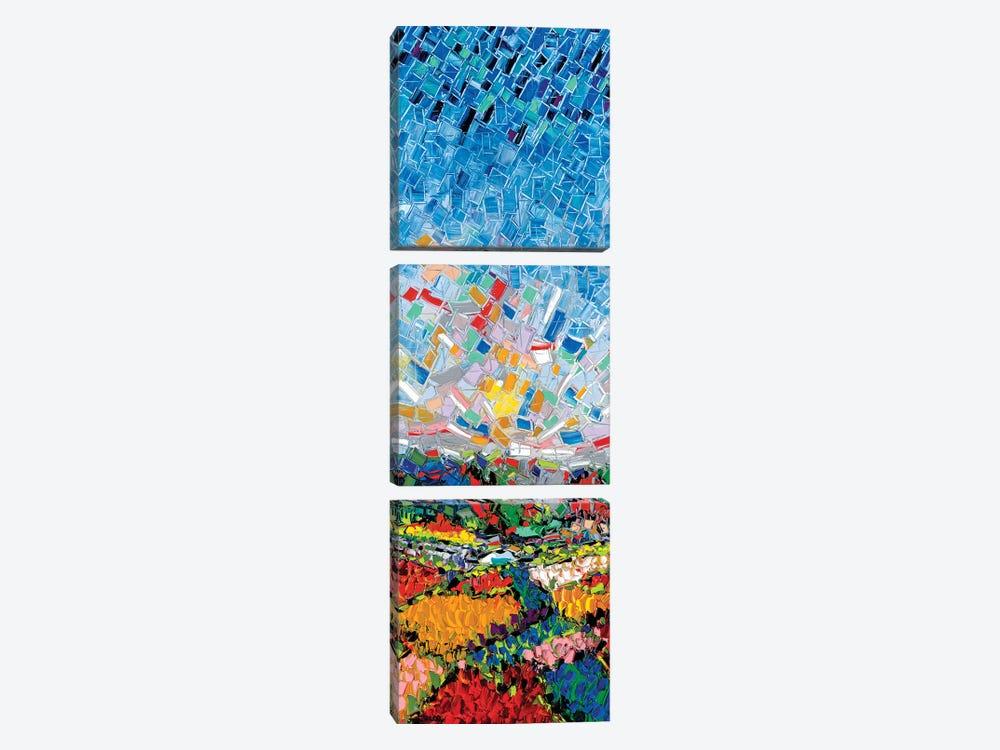Glorious Fields by Joachim Mcmillan 3-piece Art Print
