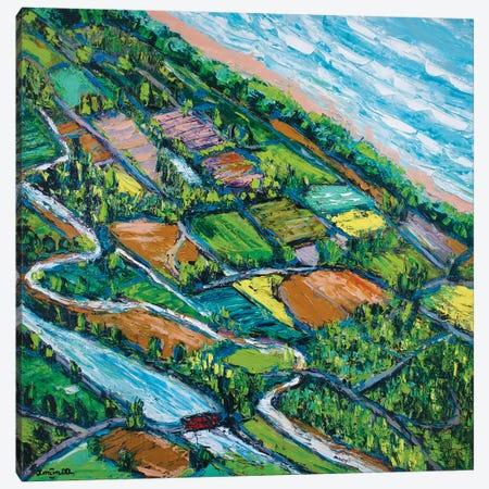 Overview Canvas Print #JOI24} by Joachim Mcmillan Canvas Artwork