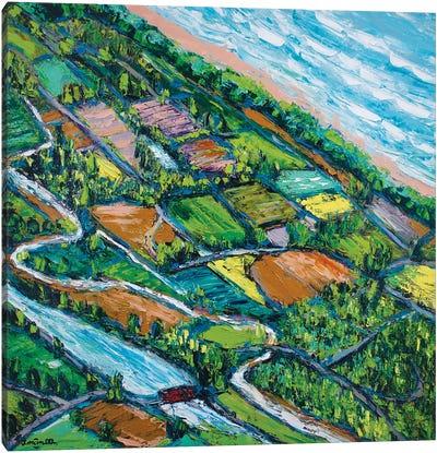 Overview Canvas Art Print