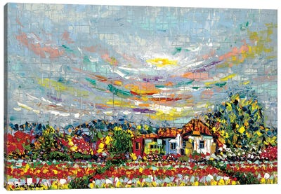 Land Of Beauty Canvas Art Print