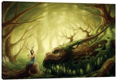 Forgotten Fairytales Canvas Art Print