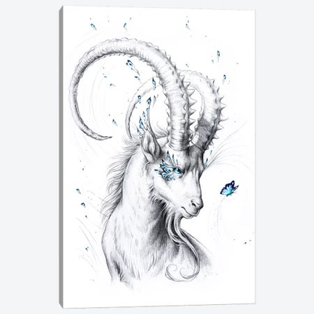 Capricorn Canvas Print #JOJ25} by JoJoesArt Canvas Art Print