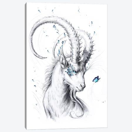 Capricorn Canvas Print #JOJ25} by JoJoesArt Canvas Art Print